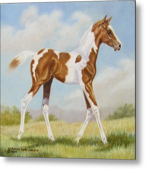 Horse Metal Print featuring the painting Half Arabian Pinto Filly by Dorothy Coatsworth