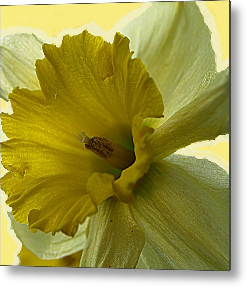 Yellow Metal Print featuring the painting Just Yellow by Kim
