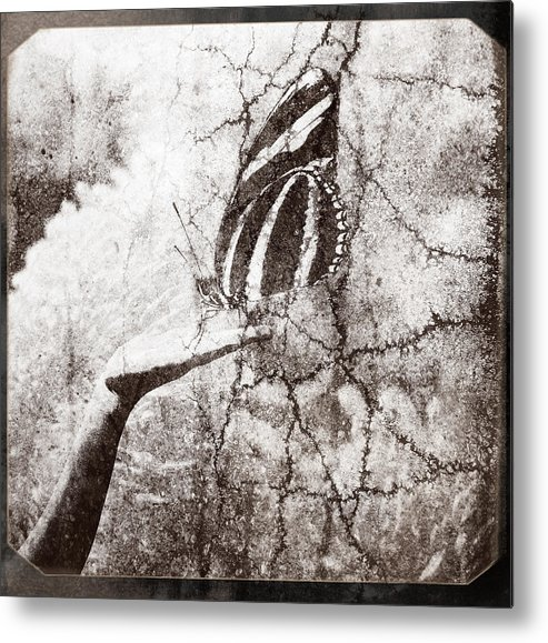 Hand Metal Print featuring the photograph Life In A Hand by Andriy Zolotoiy