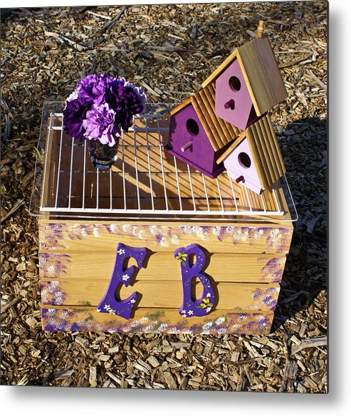 Cove Metal Print featuring the photograph Purple Birdhouses 3 by Douglas Barnett
