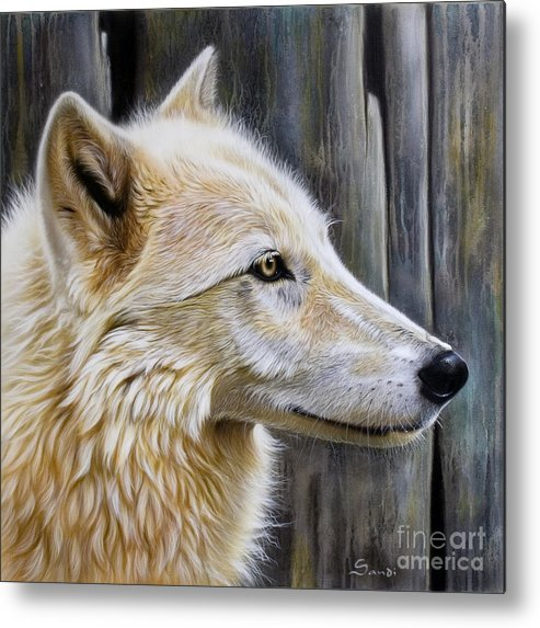 Wolves Metal Print featuring the painting Rose by Sandi Baker