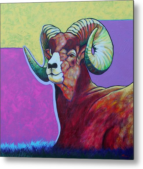 Wildlife Metal Print featuring the painting Top Heavy Big Horn by Joe Triano