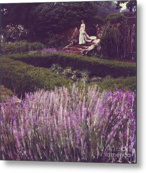 Polaroid Metal Print featuring the photograph Twilight Among The Lavender by Steven Godfrey
