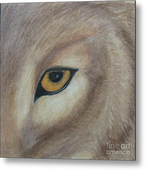 Wolf Metal Print featuring the drawing Watcher by Juli House