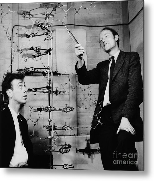 Watson Metal Print featuring the photograph Watson And Crick by A Barrington Brown and Photo Researchers