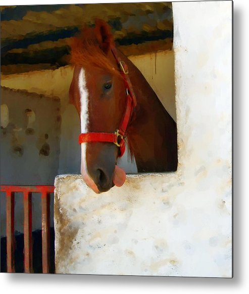Horse Metal Print featuring the painting What Do Horses Think Of Us by Jonathan Galente
