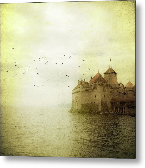 Animal Themes Metal Print featuring the photograph Château De Chillon by Tom
