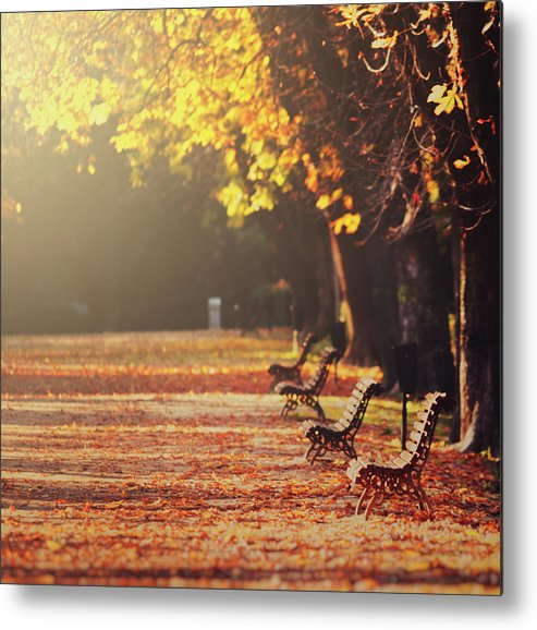 Tranquility Metal Print featuring the photograph Park Benches In Fall by Julia Davila-lampe