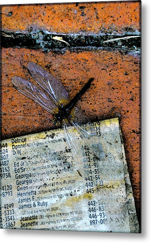 Dragonfly Metal Print featuring the photograph FlightPage by Leon Hollins III