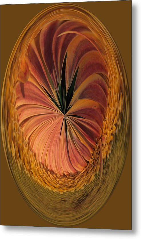 An Umber Gazania Is Depicted In An Abstract Metal Print featuring the photograph Gazania Umber Abstract by Keith Gondron