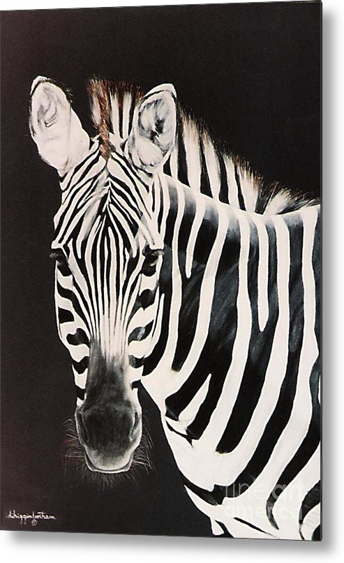 black And White Metal Print featuring the painting Zebra facing left by DiDi Higginbotham