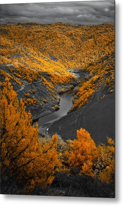 Scenic Metal Print featuring the photograph Infrared 1 by Jim Painter