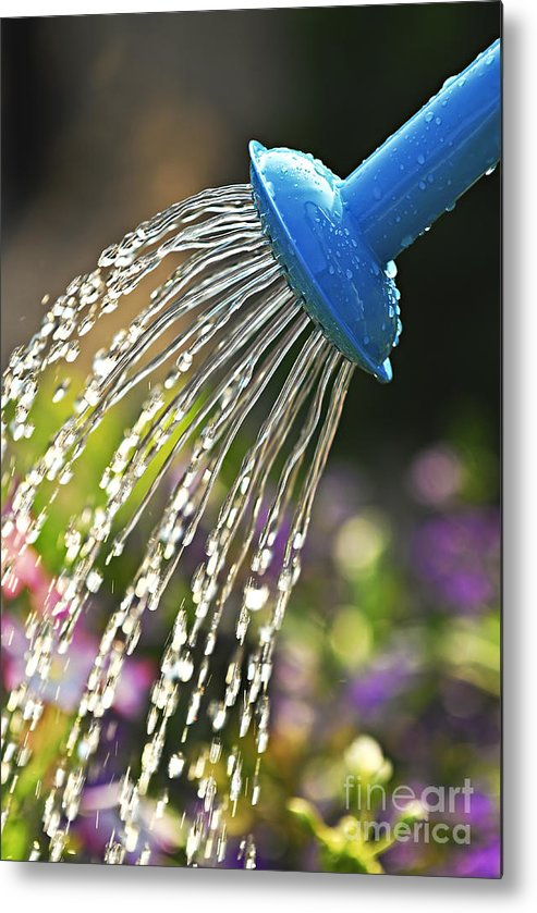 Water Metal Print featuring the photograph Watering Flowers by Elena Elisseeva