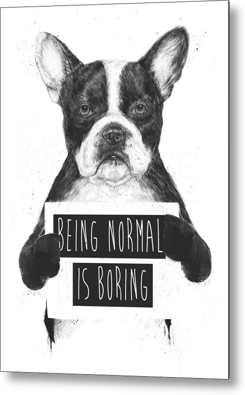 Bulldog Metal Print featuring the drawing Being normal is boring by Balazs Solti