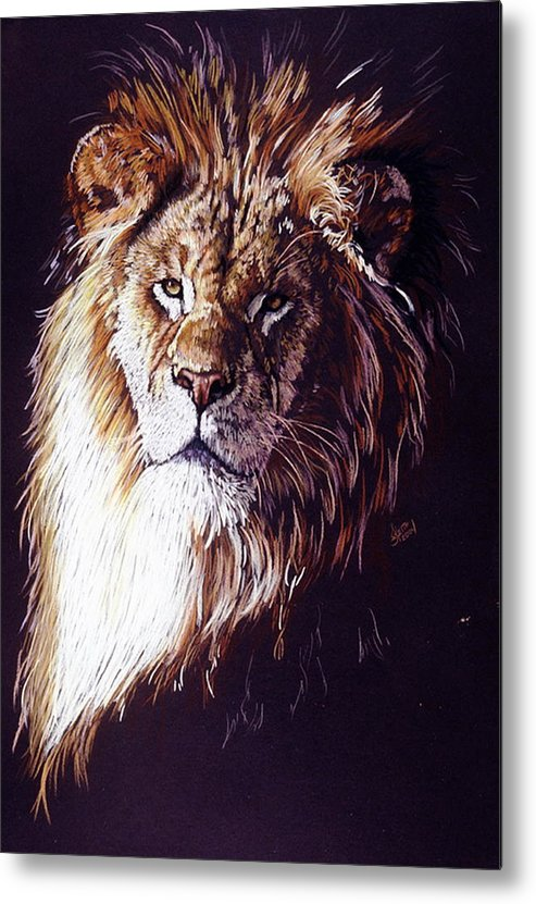 Lion Metal Print featuring the drawing Maestro by Barbara Keith