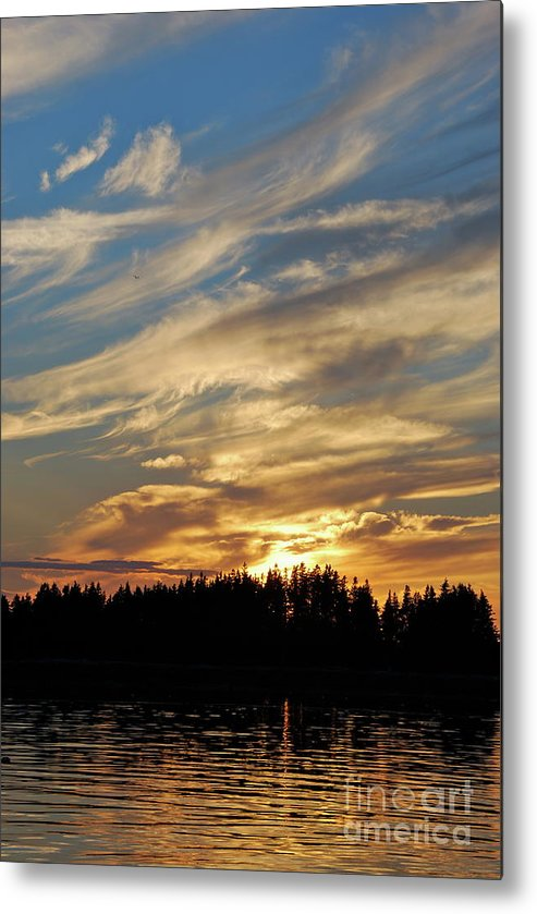 Maine Metal Print featuring the photograph Maine Delight by Chad Natti