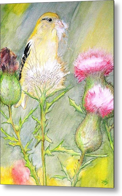 Goldfinch Metal Print featuring the painting Nest Fluff by Debra Sandstrom
