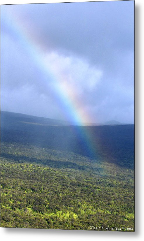 Rainbow Metal Print featuring the photograph Rainbow by Nicole I Hamilton
