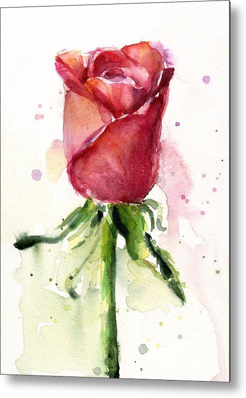 Rose Metal Print featuring the painting Rose Watercolor by Olga Shvartsur