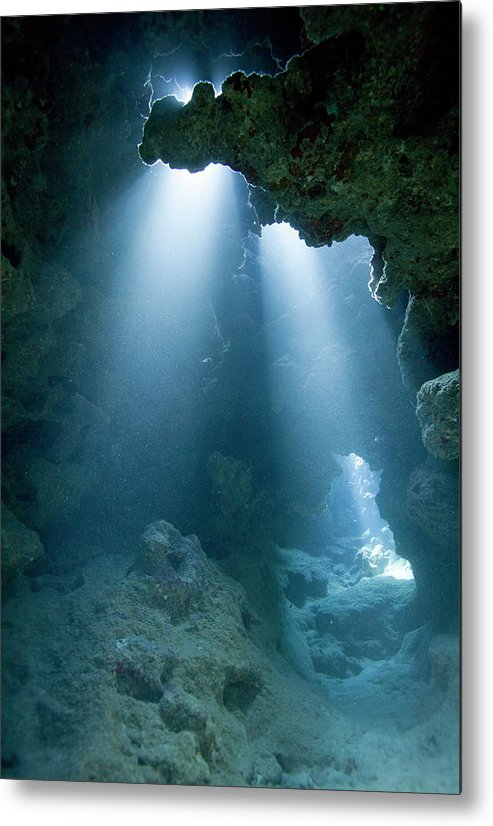 Underwater Metal Print featuring the photograph Caribbean Sea, Cayman Islands, Grand by Paul Souders