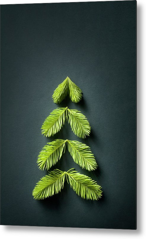 Needle Metal Print featuring the photograph Christmas Tree by Malerapaso