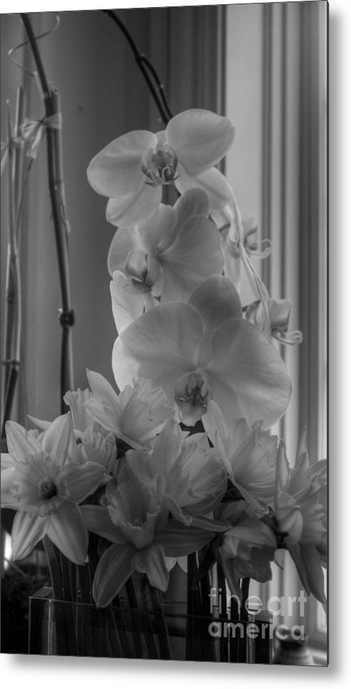 Orchids Metal Print featuring the photograph Orchids 2 by David Bearden