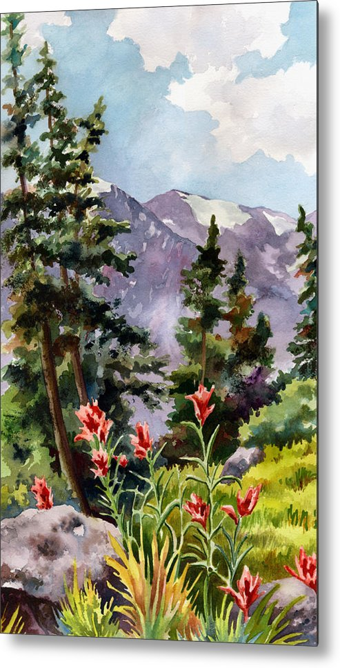 Colorado Art Metal Print featuring the painting Indian Paintbrush by Anne Gifford