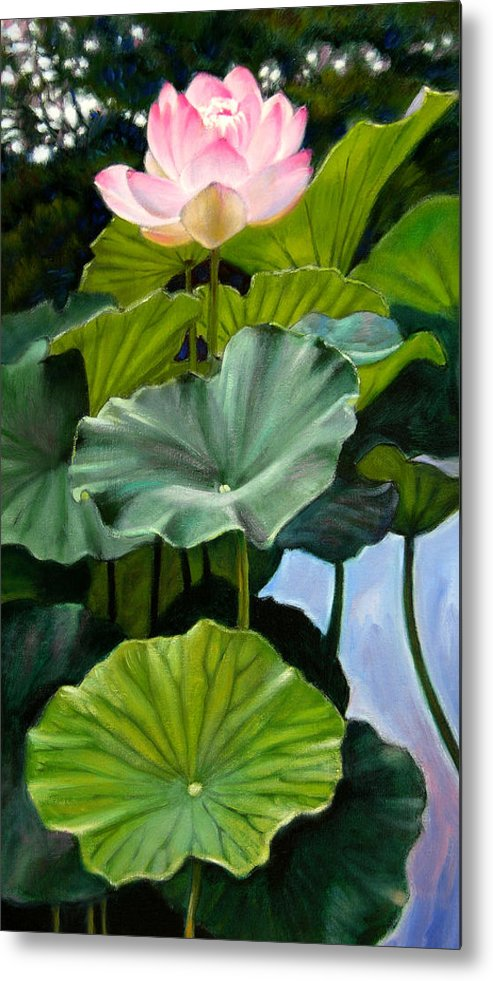 Lotus Flower Metal Print featuring the painting Lotus Rising by John Lautermilch