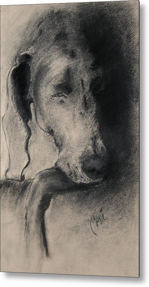 Weimaraner Metal Print featuring the drawing Silhouette by Cori Solomon