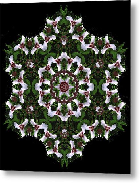 Mandala Metal Print featuring the digital art Mandala Trillium Holiday by Nancy Griswold