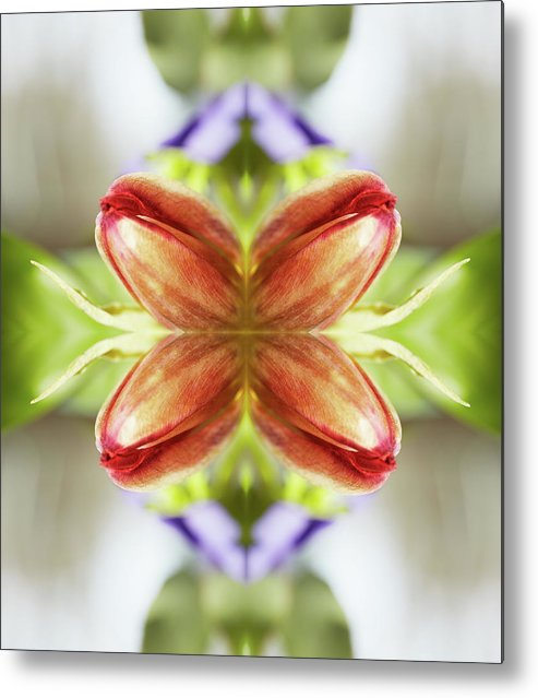 Tranquility Metal Print featuring the photograph Red Tulips by Silvia Otte