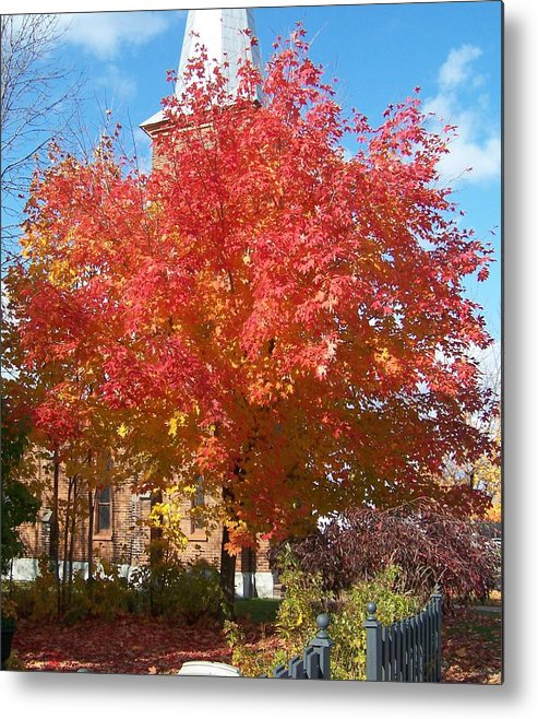 Tree Metal Print featuring the photograph The Tree By The Church - Photograph by Jackie Mueller-Jones