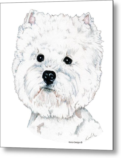 West Highland White Terrier Metal Print featuring the drawing West Highland White Terrier, Westie by Kathleen Sepulveda