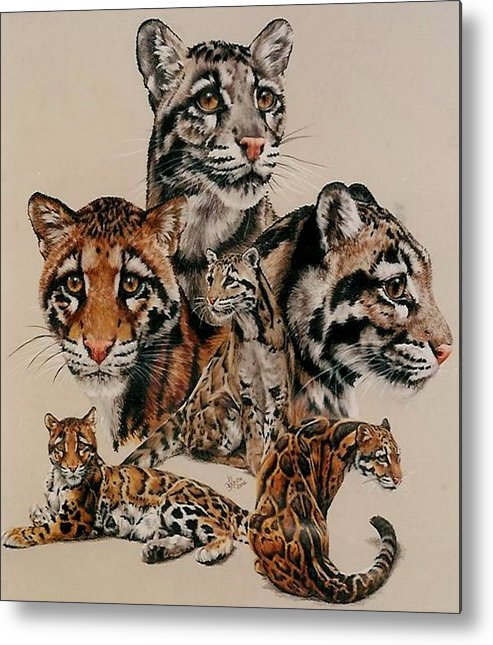 Clouded Leopard Metal Print featuring the drawing Absence of Fear by Barbara Keith