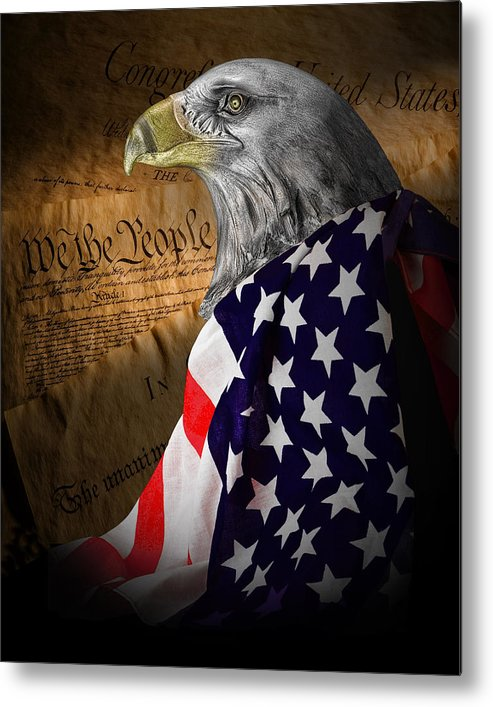 Eagle Metal Print featuring the photograph We The People by Tom Mc Nemar