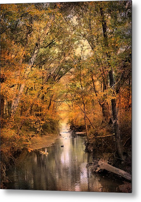Autumn Metal Print featuring the photograph Autumn Riches 2 by Jai Johnson