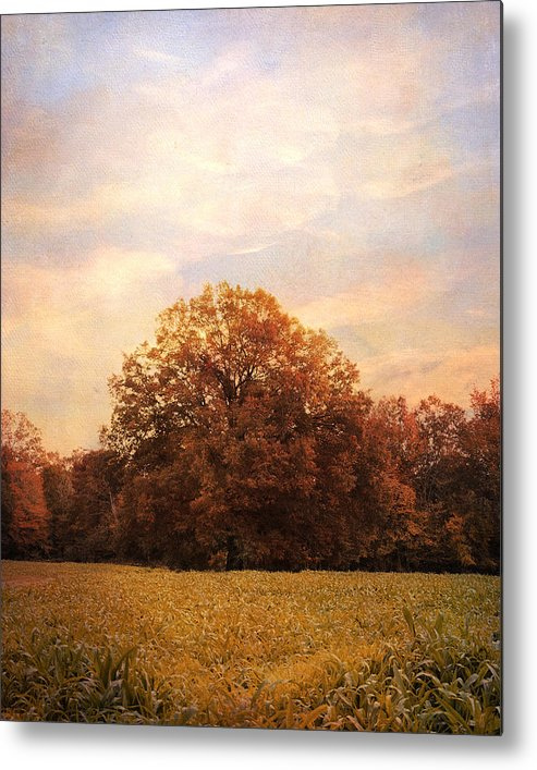 Autumn Metal Print featuring the photograph Where Memories Are Made by Jai Johnson