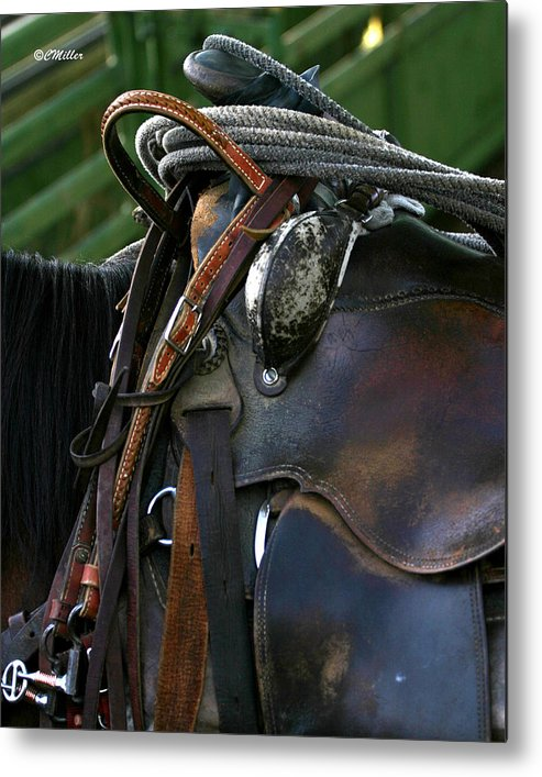 Rodeo Metal Print featuring the photograph Just Gettin Broke In.. by Carol Miller