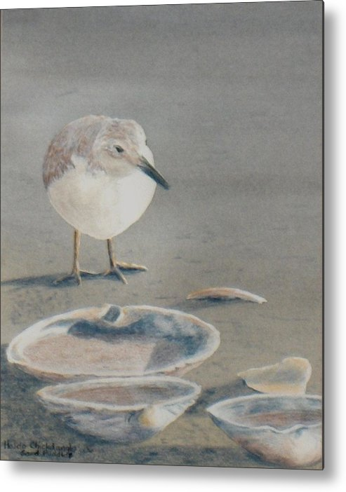 Sandpiper Metal Print featuring the painting Sand Puddles by Haldy Gifford