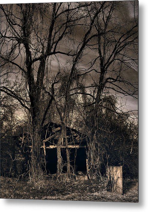 Stark Metal Print featuring the photograph Somber Mournings by Steve Parrott