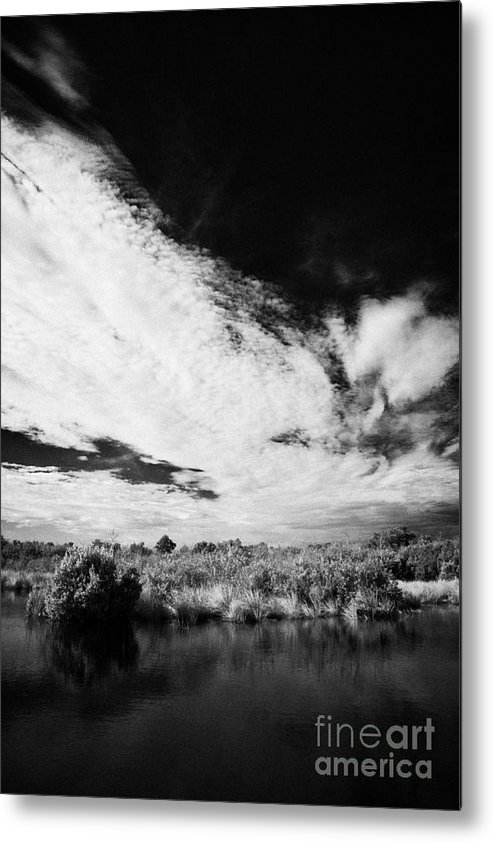Florida Metal Print featuring the photograph Flooded Grasslands And Mangrove Forest In The Florida Everglade by Joe Fox
