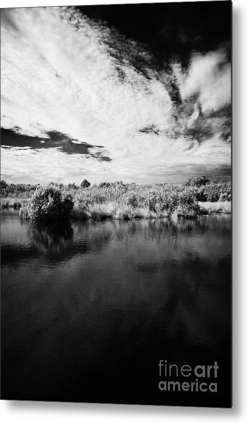 Florida Metal Print featuring the photograph Flooded Grasslands And Mangrove Forest In The Florida Everglades by Joe Fox