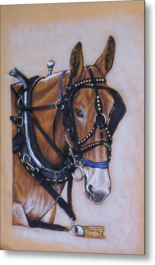 Horses Metal Print featuring the painting Augustus by Lilly King