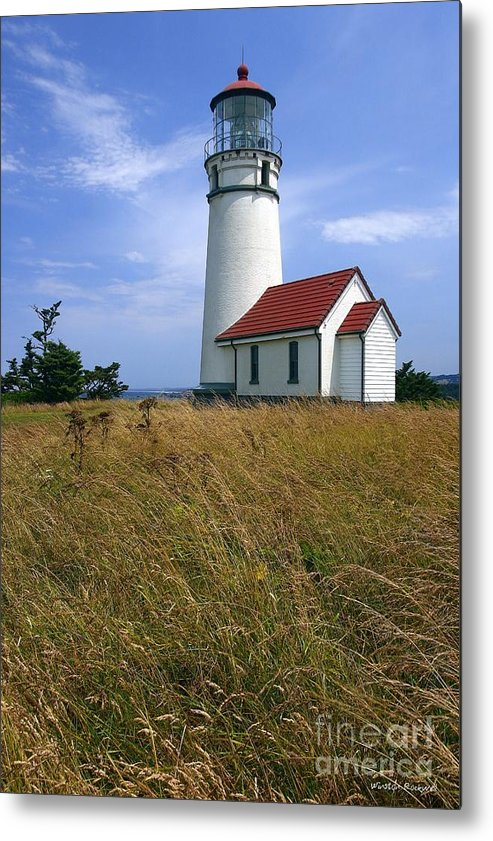 Lighthouse Oregon cape Blanco Light Coast Metal Print featuring the photograph Cape Blanco Light by Winston Rockwell