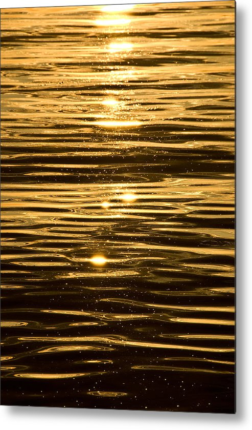 Metal Print featuring the photograph Reflection by JK Photography