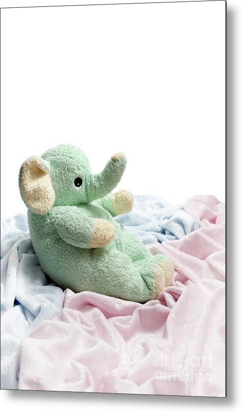Soft Metal Print featuring the photograph Soft And Cuddly by Jeannie Burleson