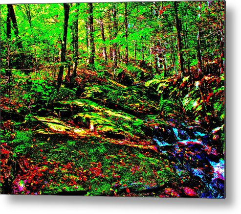 Landscape Metal Print featuring the photograph Brook Texture 16 by George Ramos