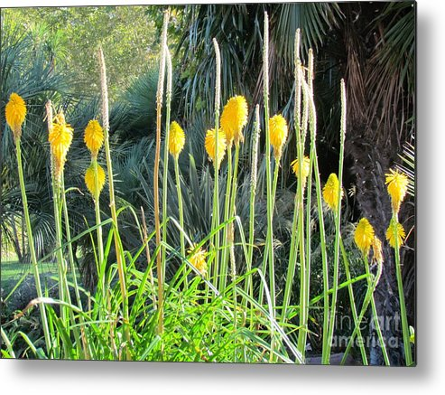Spain Metal Print featuring the photograph Madrid Flowers by Ted Pollard