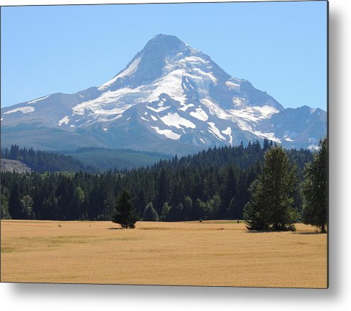 Nature Metal Print featuring the photograph Mount Hood by Lucy Howard