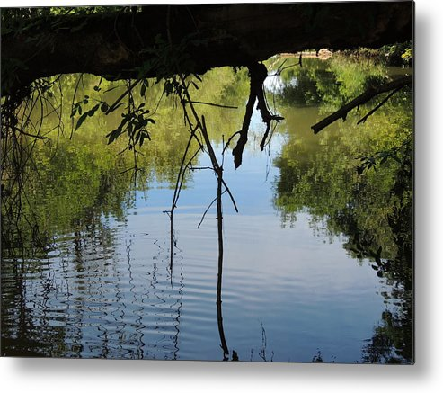 Reflection Metal Print featuring the photograph Reflection by Lucy Howard
